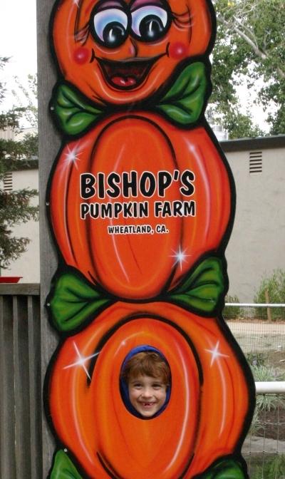 Bishop's Pumpkin Farm Wheatland CA