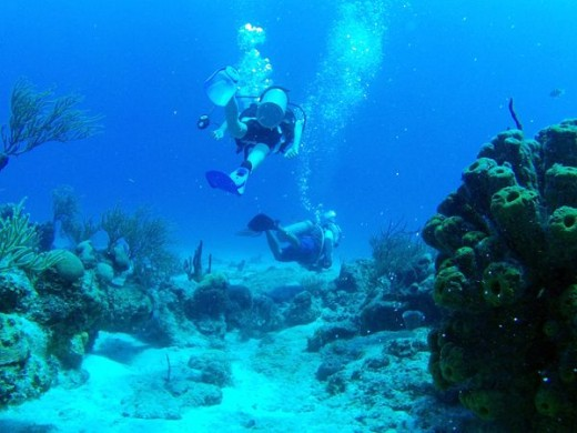 Here's my son and our dive master enjoying the coral reefs of Cozumel.