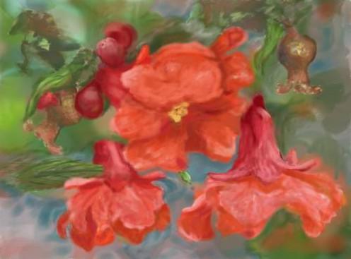 Pomegranate Digital Oil Painting