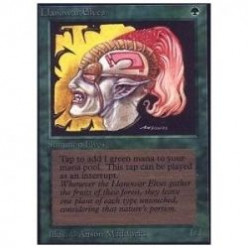 Find inspiration for a Magic the Gathering Elf theme deck