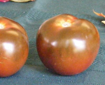 Black Krim Tomato from Our Garden