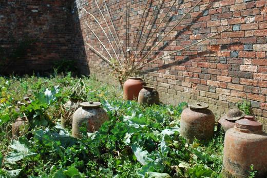 Old rubarb pots.