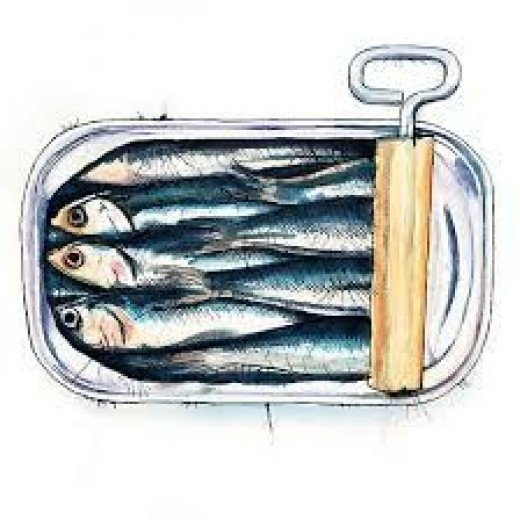 Sardines are high in Omega 3 Fatty Acids