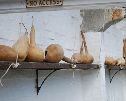Storing squash to harden the skins.