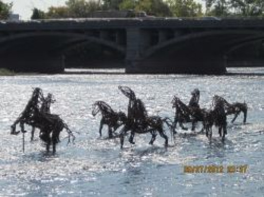 Horses in the Grand River