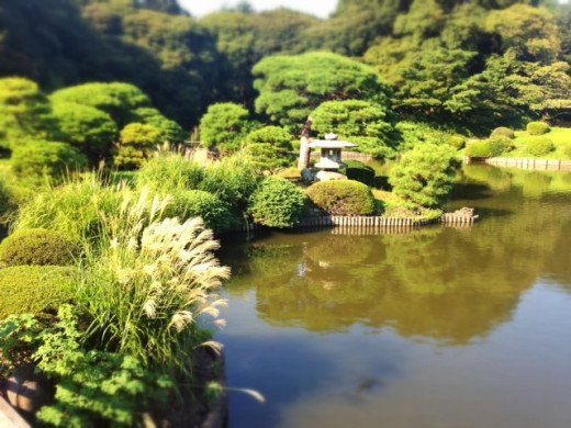Formal Japanese gardens are tranquil and is the perfect place for contemplation.