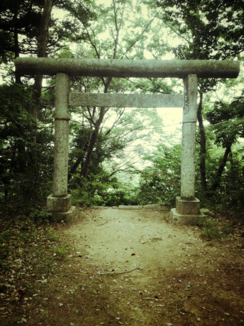 On the way down, we stumble upon this torii gate