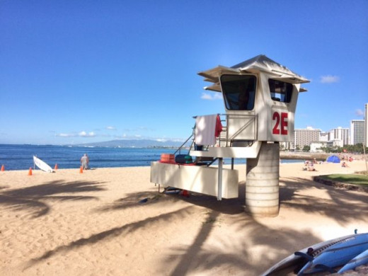 Hot lifeguards? Check!