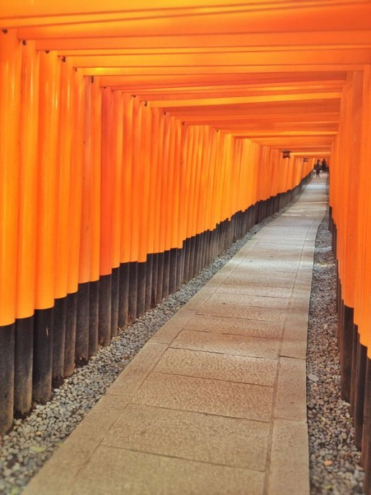 The tunnel of torii gates.