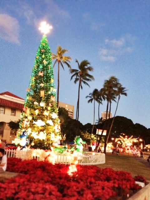It's Christmas time in Hawaii.