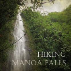 Manoa Falls-Hiking Through a Hawaiian Rainforest
