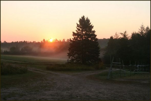 Watching The Early Morning Sunrise From The Driveway August 2012