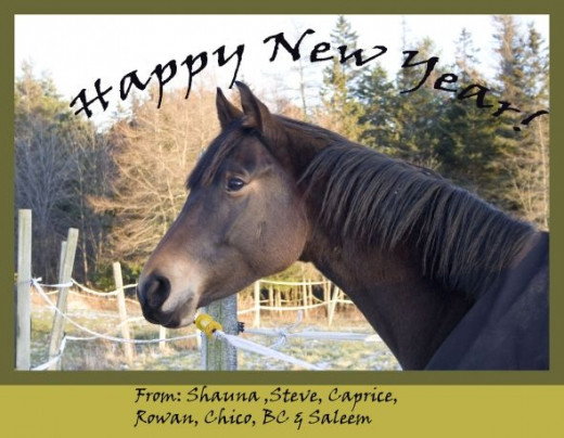 Caprice starring on our New Year Cards