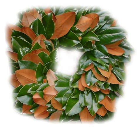 Square Wreath with alternated Magnolia leaves
