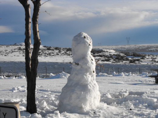 Nature is a natural at giving us forms for our expression.  No makeup here, yet, frosty fits right in.