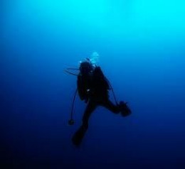 Dealing with Risks Associated with Freediving