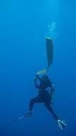 scuba-diving-safety-sausage.jpg