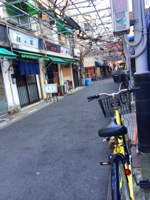 A hidden street full of tiny cubbyhole-sized bars ready to explore.