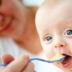 Quinoa - Recipes for babies and young children