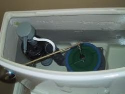 toileltbowl.jpg