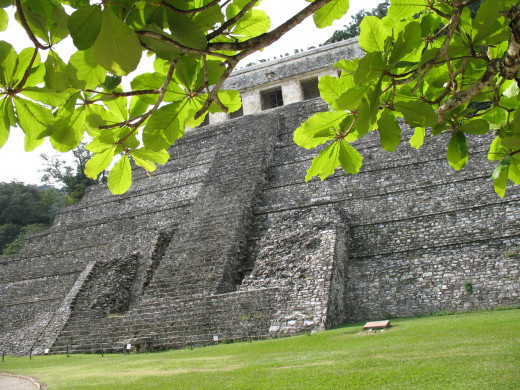 Sitting beneath a large shade tree viewing the pyramid