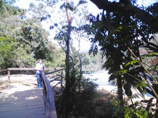 Me above the falls at Agua Azul