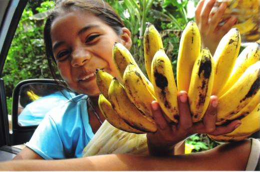 Young girl selling bananas along the roadway