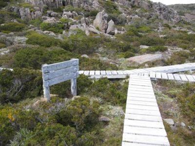 Boardwalk on the way to Tarn Shelf