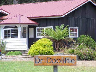* Dr Doolittle *