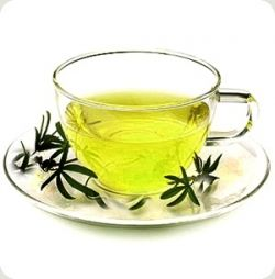 Green Tea reduces fat!