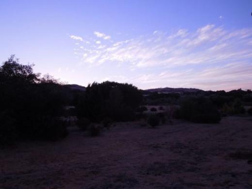 Scene 1, dusk/dawn setting.