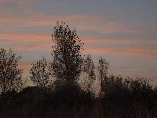 Scene 2, sunset setting.