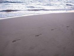 Long Beach footprints