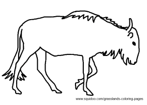 Gnu / Wildebeest Coloring Pages