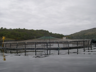 Salmon Farms are Similar to this Trout Farm, Pictured on Loch Etive, Scotland, April 2011
