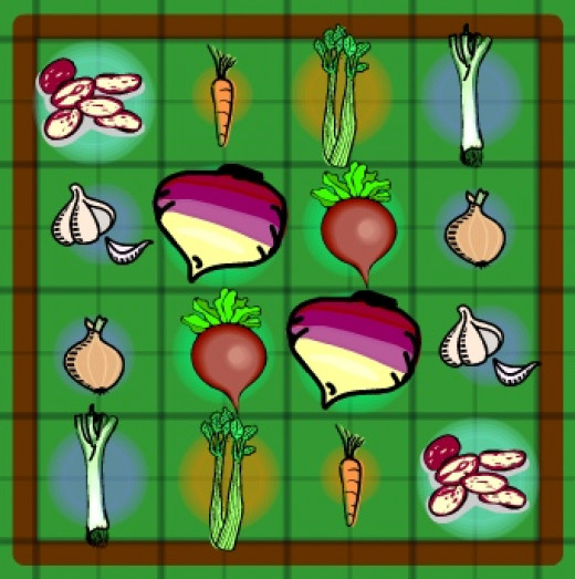 4 x 4 vegetable garden plans