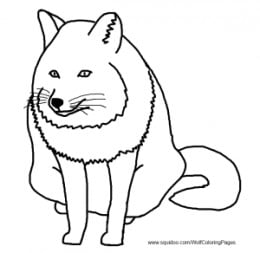 realist fox coloring page
