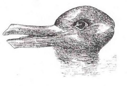 Bi-stable illusions force viewers to see one image or the other at a single time, but not both. Does your vision flip back and forth between a duck facing left and a rabbit facing right? This image, first published in 1899 by J. Jastrow, is in the pu