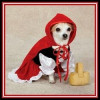 Storybook Dog Costumes