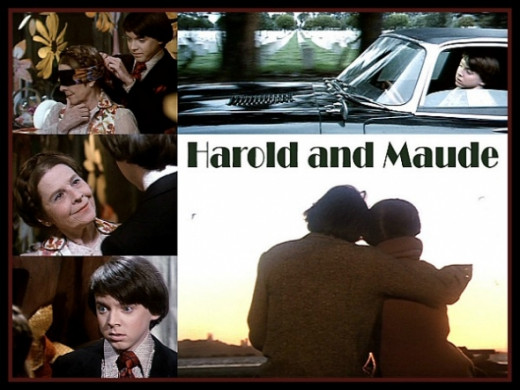 Harold and Maude 1971 Movie Collage