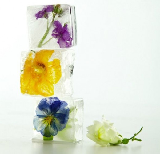 Decorative Floral Ice Cubes