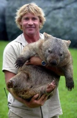 Steve Irwin With A Wombat