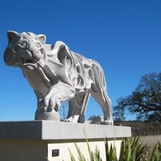 """""""Puma"""" at Sculpterra Winery in Paso Robles"""