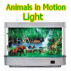 Animals in Motion Lights - Fun to Watch!