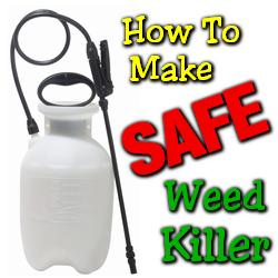Safe Weed Killer