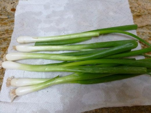how to keep green onions fresh longer