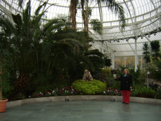 The Five Dollars in the Winter Gardens at the Peoples' Palace