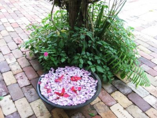 Fragrant bowls of floating petals are freshened up everyday