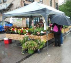 Saturday Morning Farmers Market