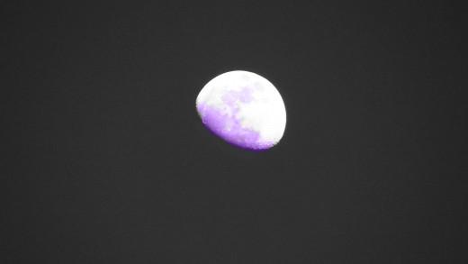 Lavender Half Moon